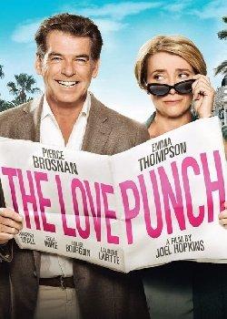 Locandina The Love Punch