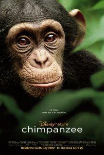Locandina Scimpanzé  Streaming