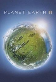 Locandina Planet Earth II