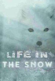 Locandina BBC: Life in the Snow