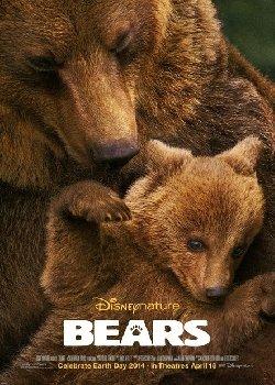 Locandina Bears