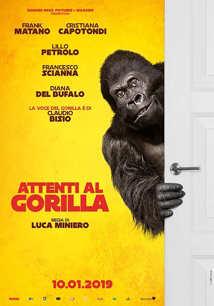 Attenti al Gorilla in Streaming