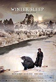 Il regno d'inverno: Winter Sleep (2014)